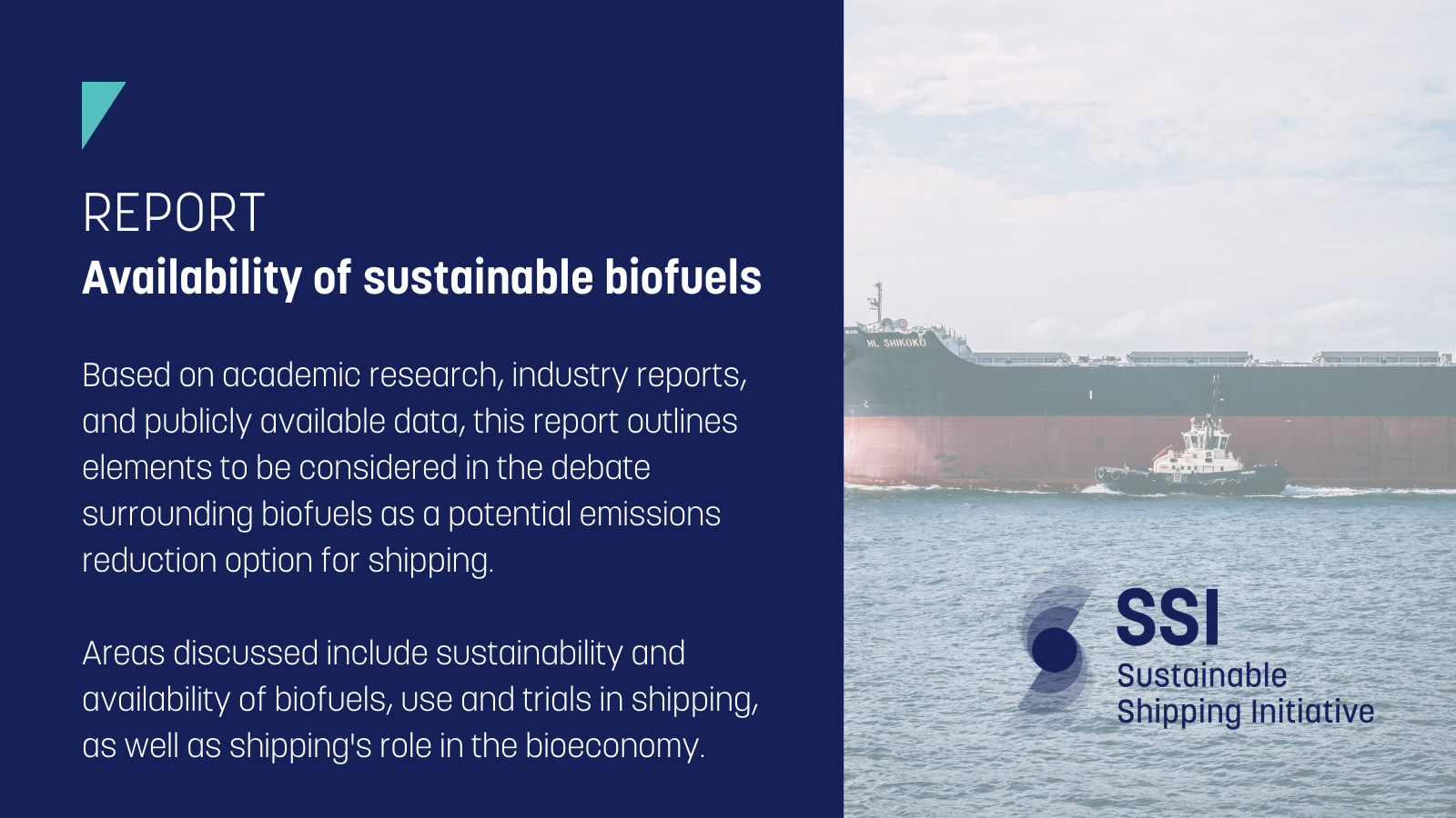 Read more about the article SSI Report: Availability of Sustainable Biofuels